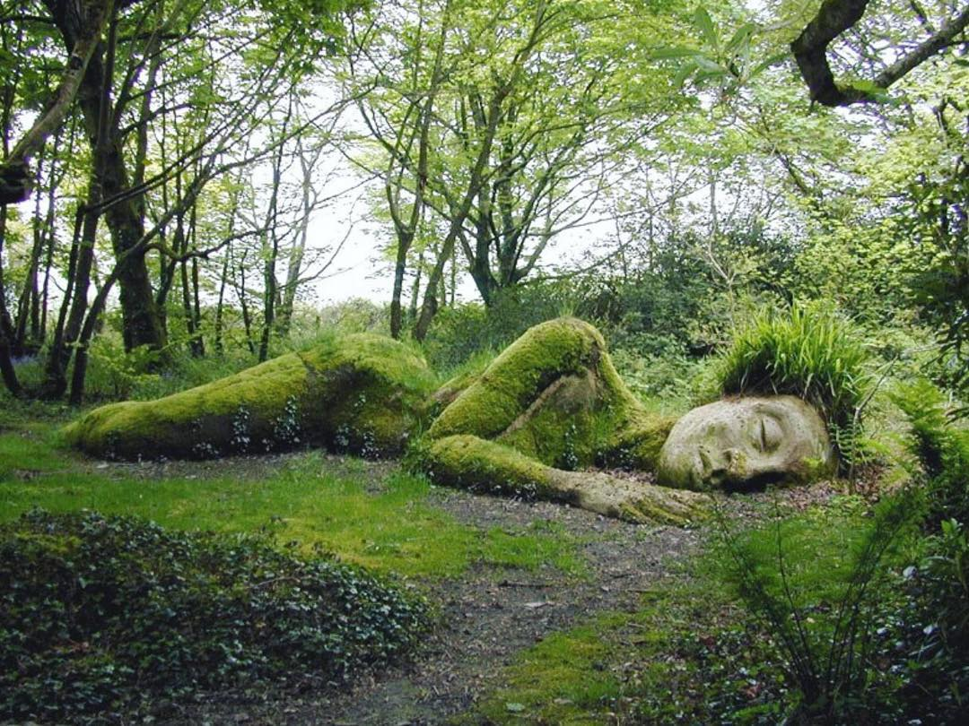 Photograph from The Lost Gardens of Heligan