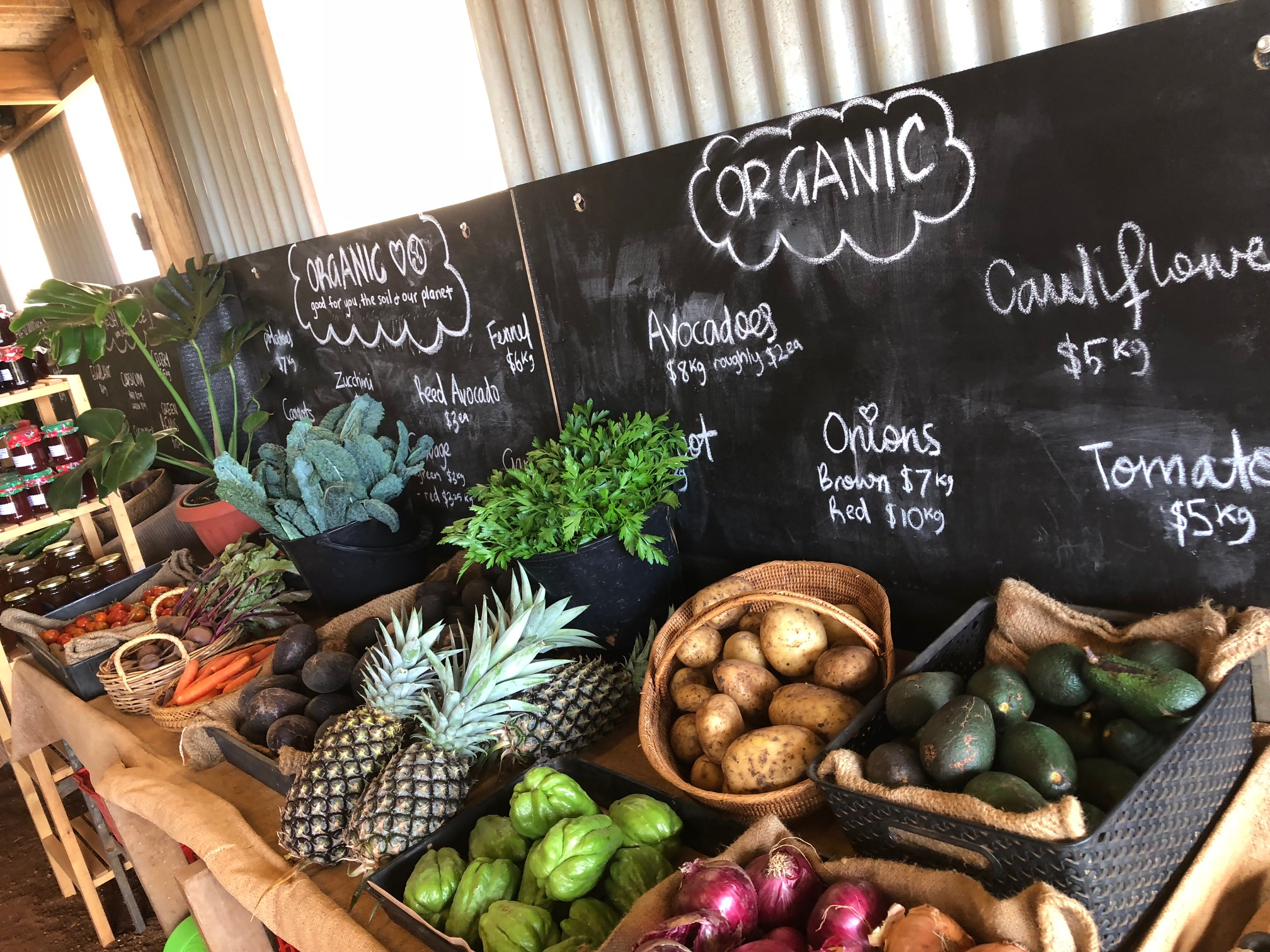 Farm & Co., Kingscliff