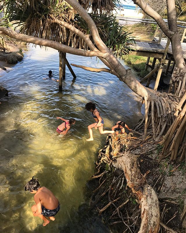 The tranquil- well, until we arrived - Eli Creek. Every hour, four million litres of water flows from its mouth in a rainforest onto 75 Mile Beach. Fast flowing good times.