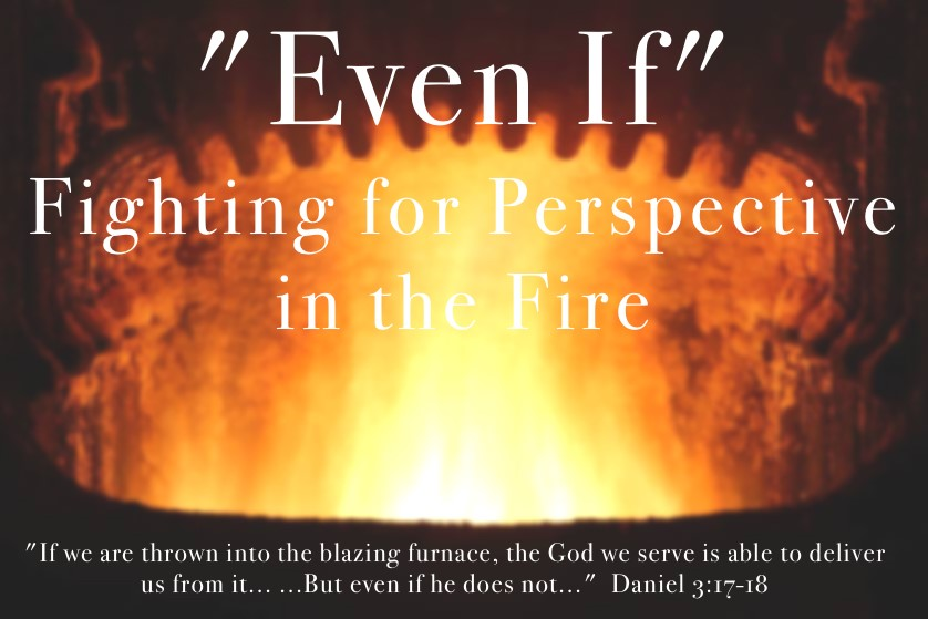 EVEN IF: FIGHTING FOR PERSPECTIVE IN THE FIRE