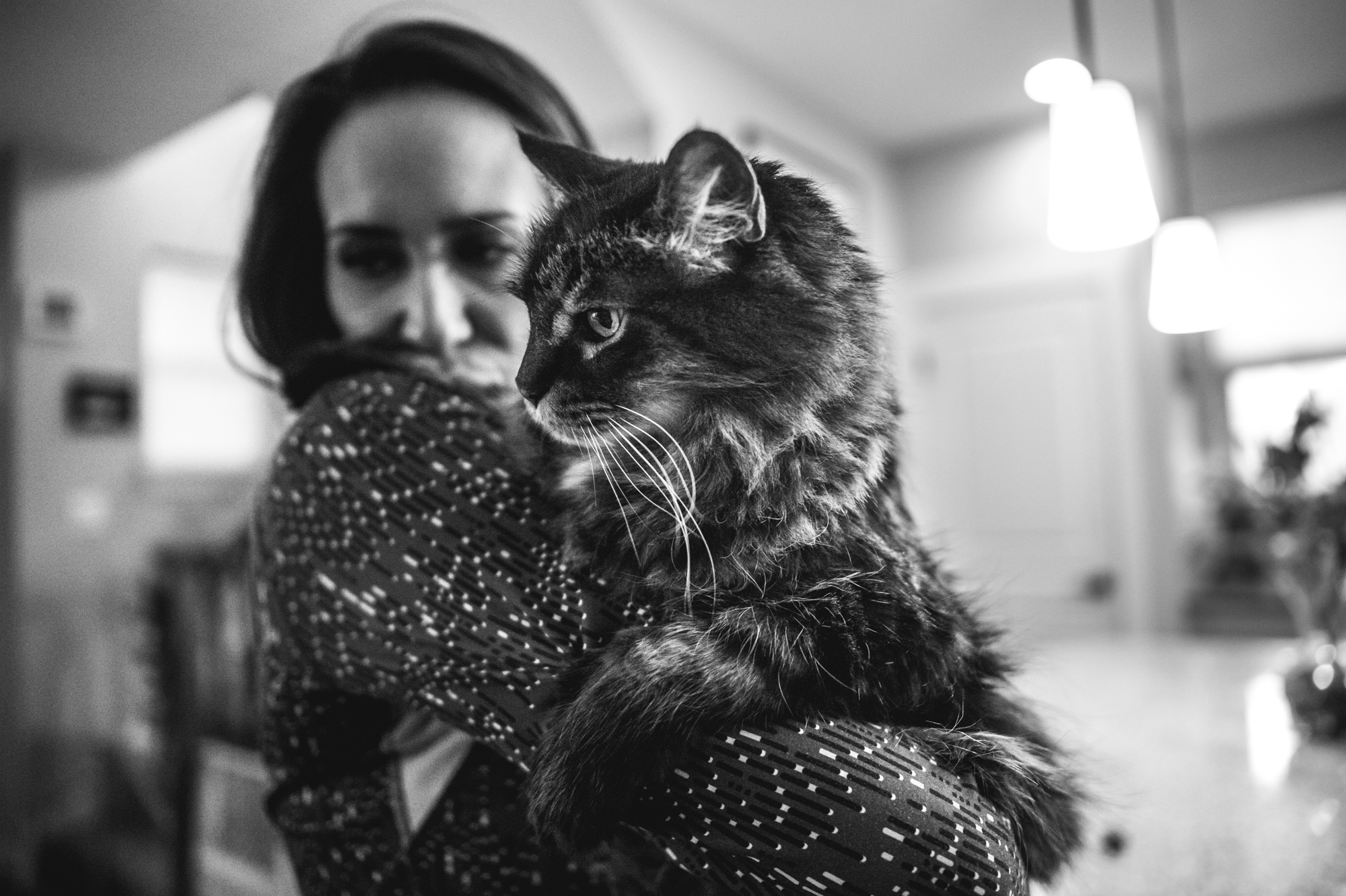 Woman holds her giant Maine Coon cat in their home in Stapleton, Colorado, black and white