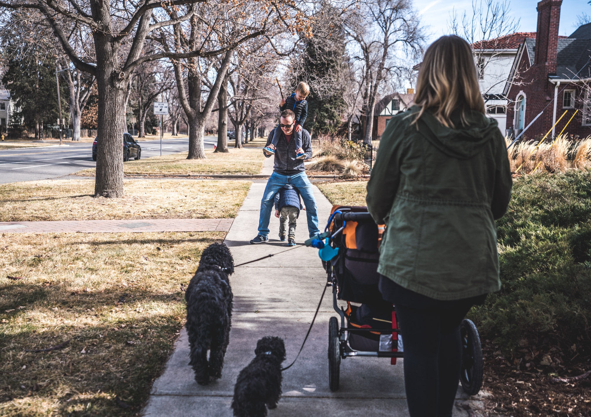 Color photo of a mother pushing a stroller and walking two black dogs while her husband, who's in front of her on the sidewalk, holds one son on his shoulders as the other runs underneath his legs. Photo taken in Park Hill, Denver, Colorado during the family's documentary family photography session.