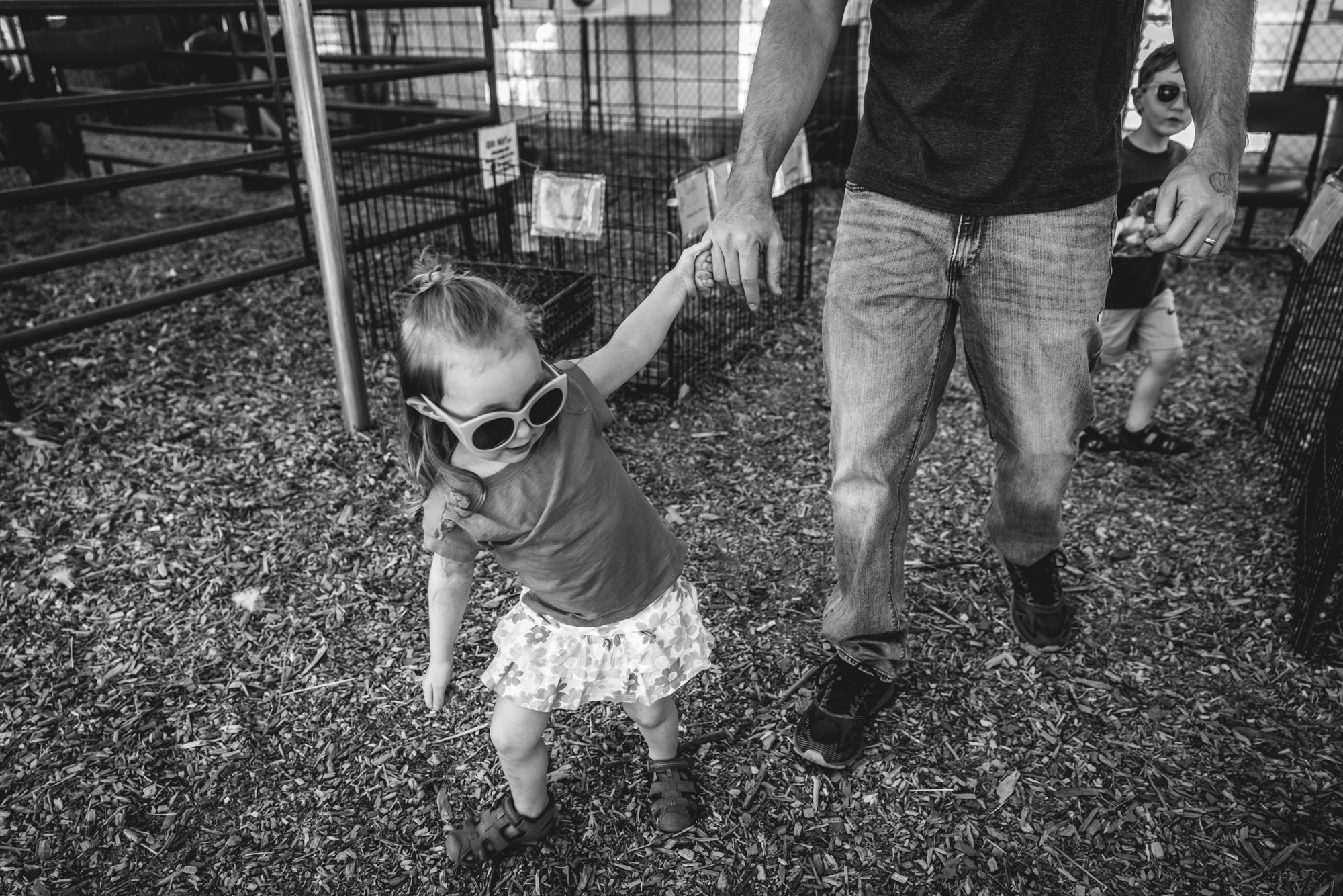 Little girl pulls her father by the hand at a petting zoo in Parker, CO