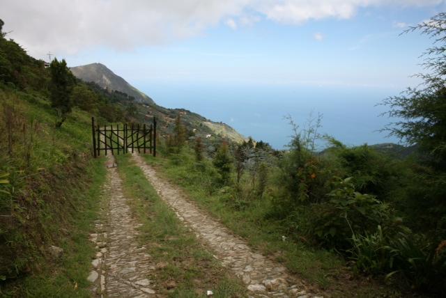 Camino de Galipan.JPG