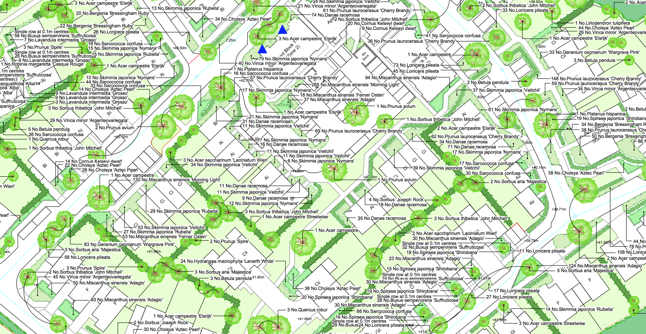 Detailed Landscape Planting Plan