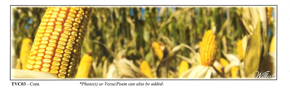 TVC03-Corn.jpg