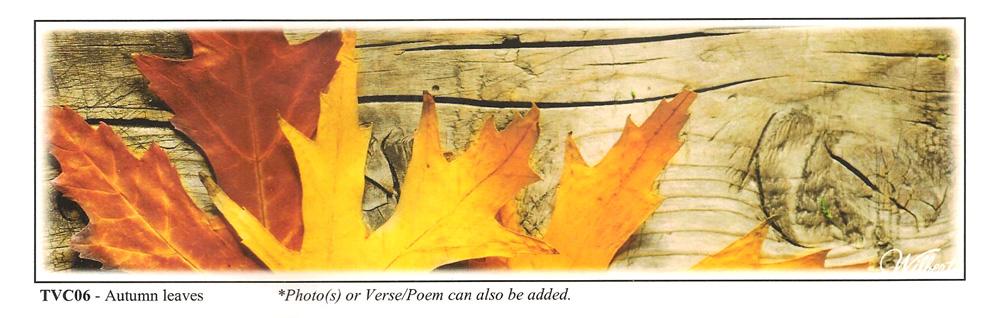 TVC06-AutumnLeaves.jpg