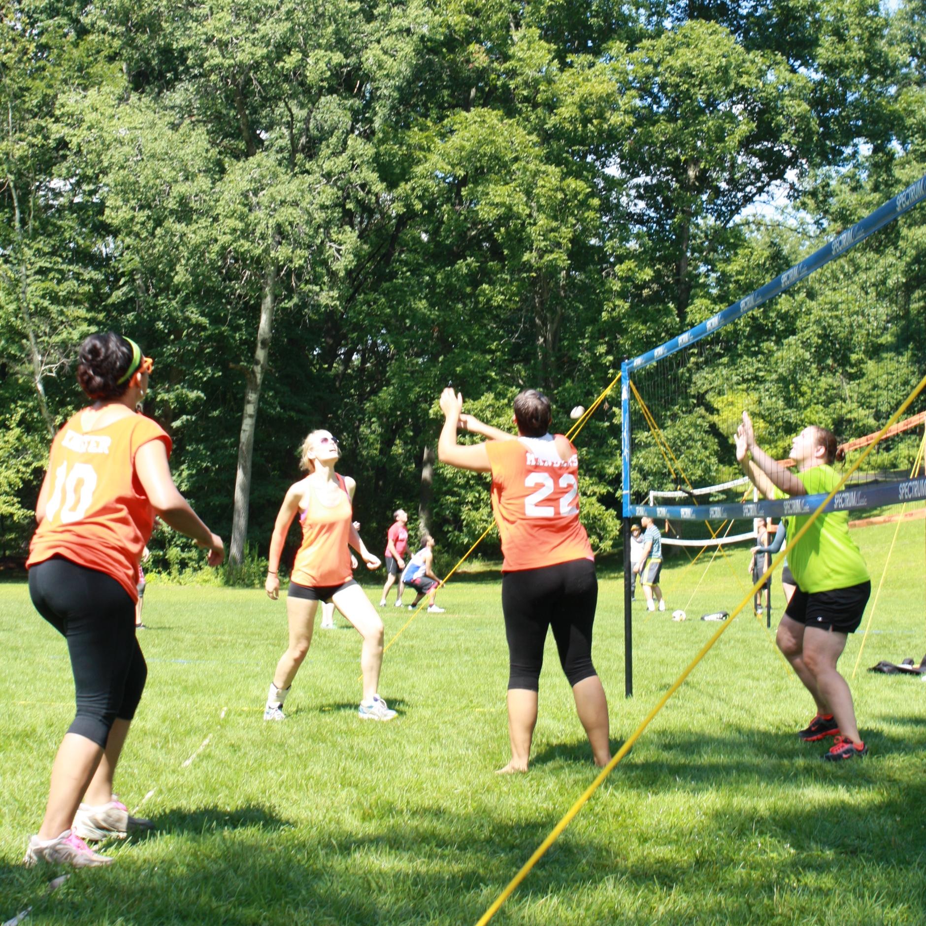 Plan a volleyball tournament