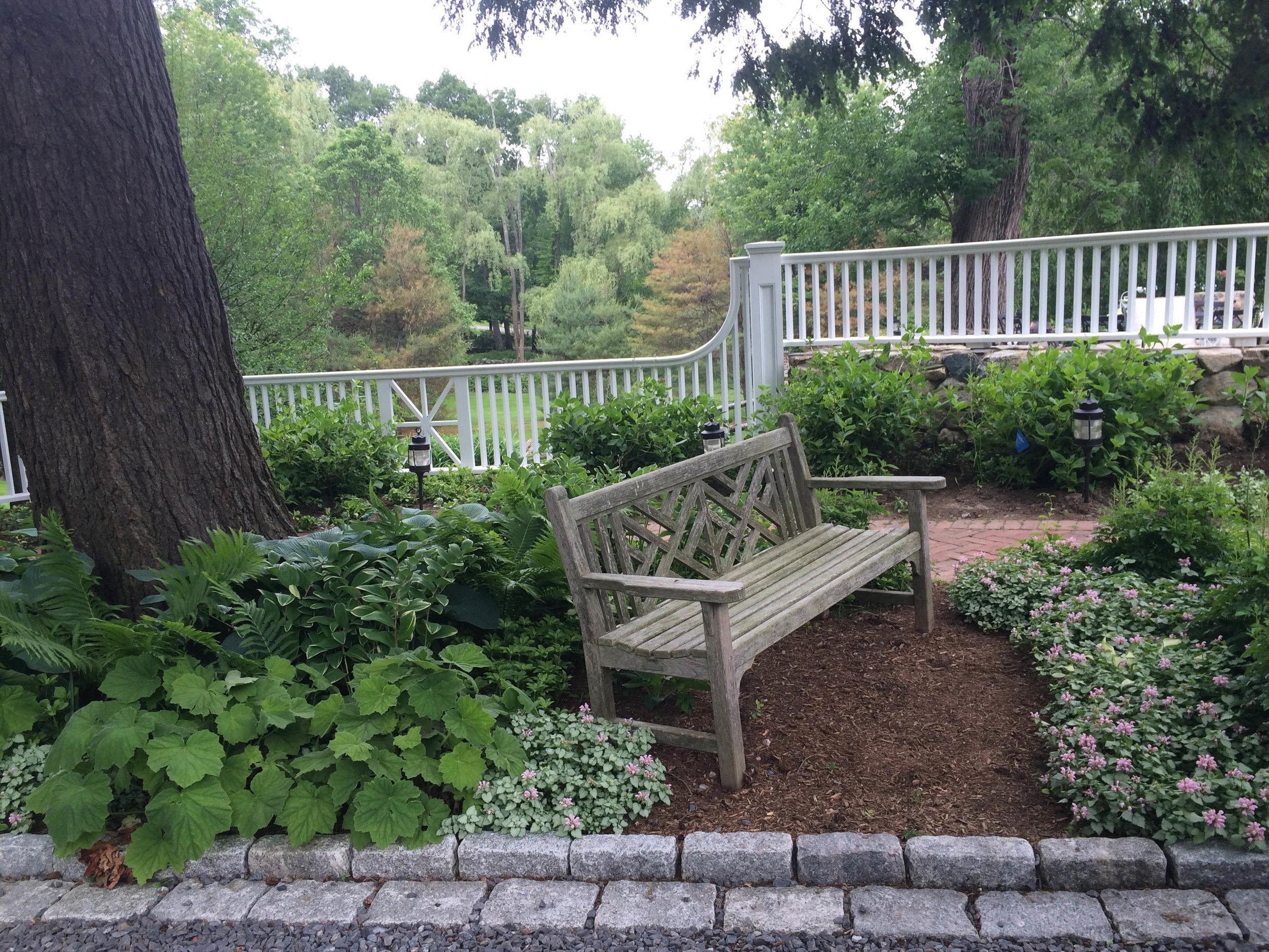 perennials and bench.jpg