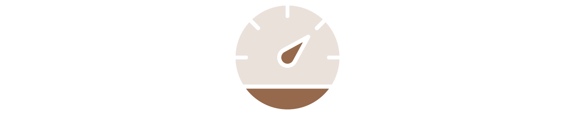 speed-detail-icon.png