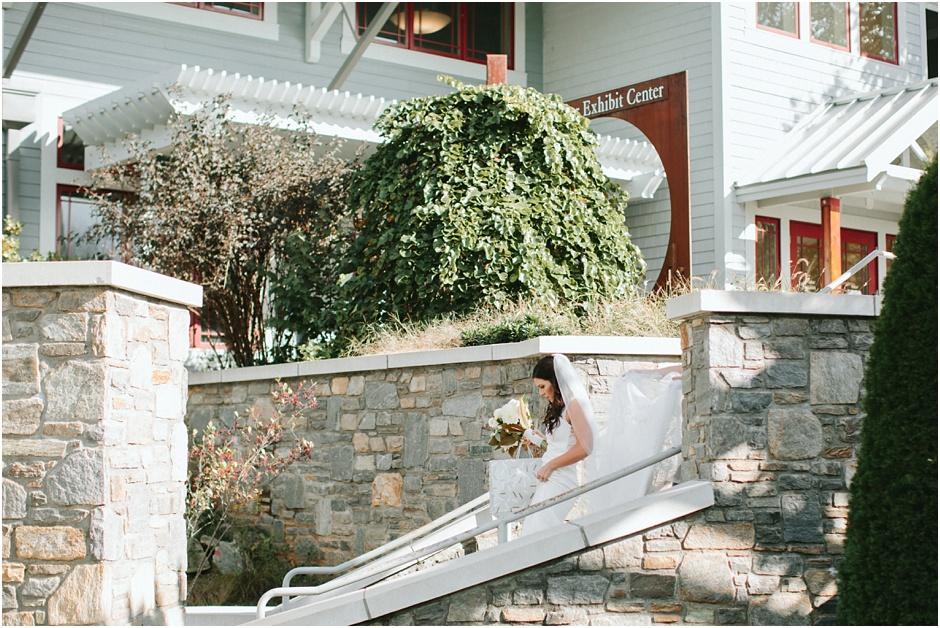 NC Arboretum Wedding | Amore Vita Photography_0017.jpg