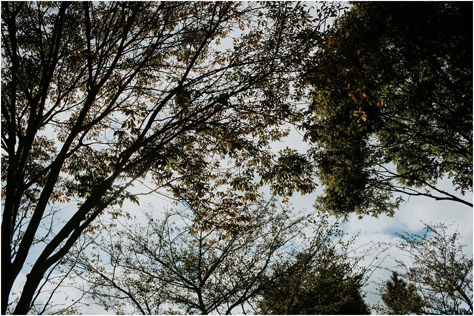 NC Arboretum Wedding | Amore Vita Photography_0020.jpg