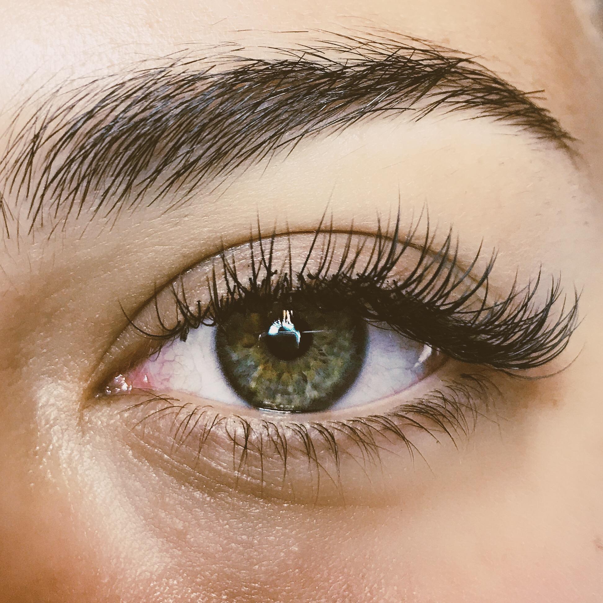 Eyebrows & Eyelashes -