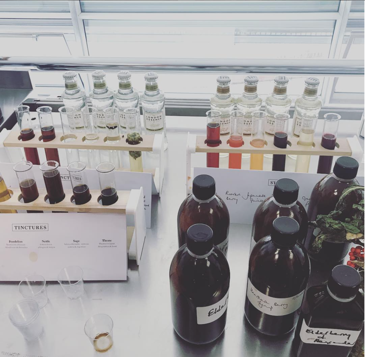 Wild foraged elixirs, tinctures & syrups