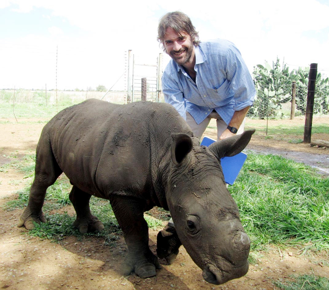 This guy, Titan, is just a baby. On a South African rhino ranch