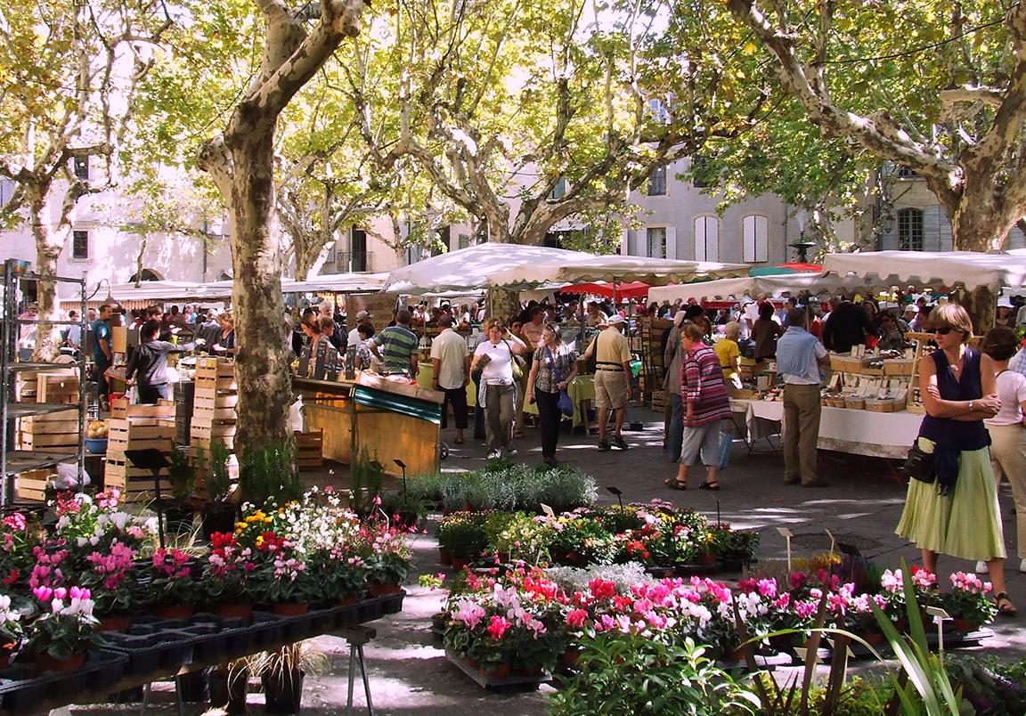 Fleurs_au_marché_d'Uzès2.jpg