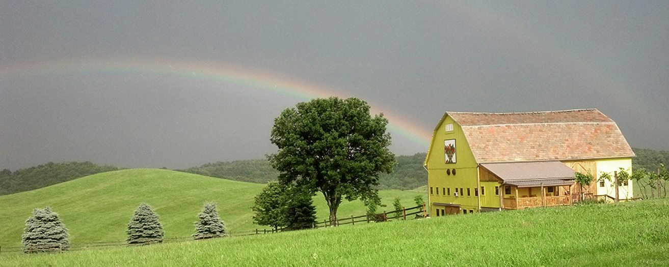 Yellow Butterfly Winery in Newcomerstown (photo courtesy of Yellow Butterfly Winery)