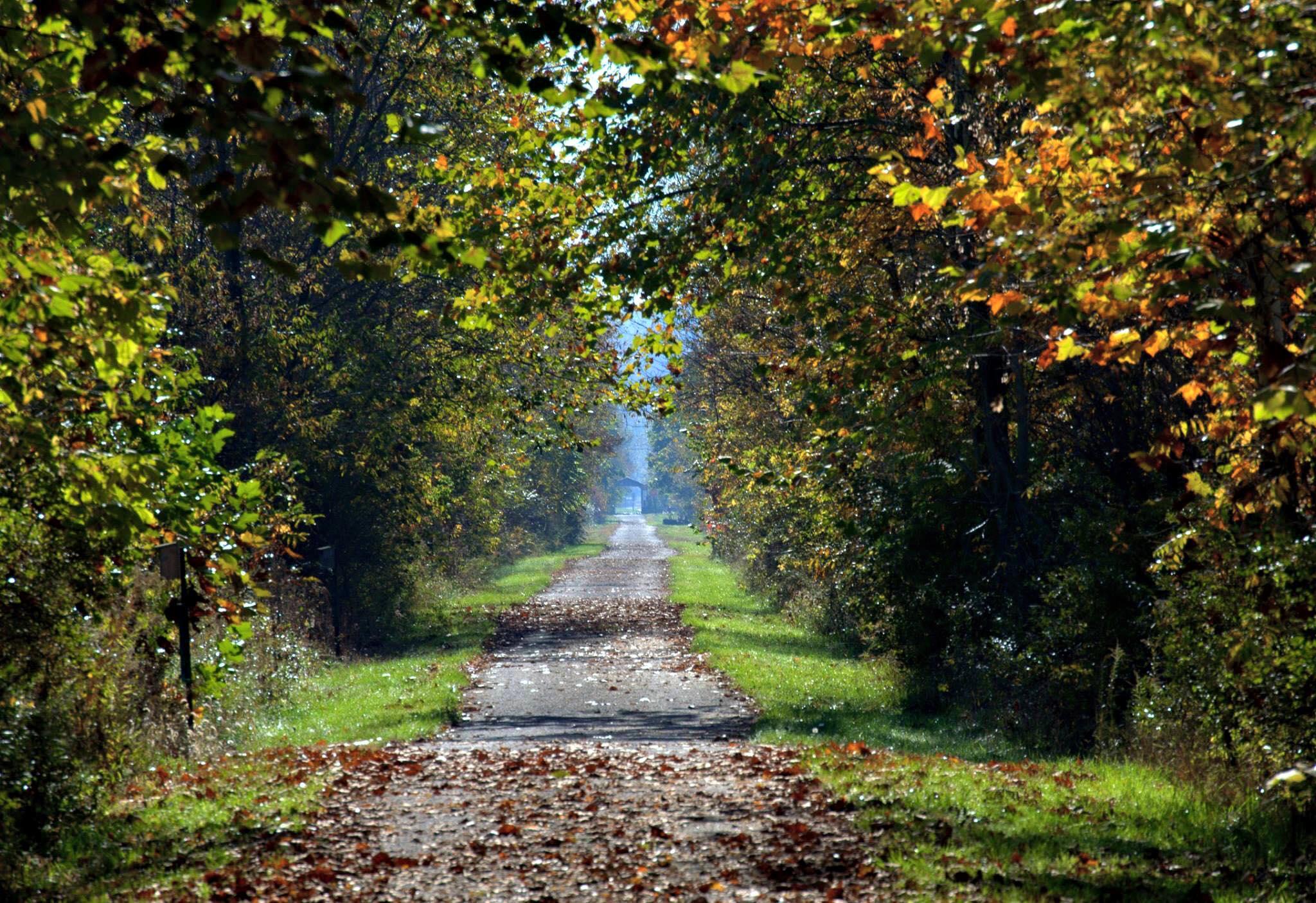 Conotton Creek Trail. (photo courtesy of Dee Ann Horstman)