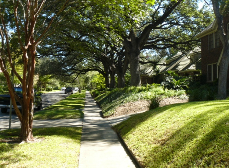 Maintaining the character of historic front yards creates cohesive and distinctive neighborhoods.