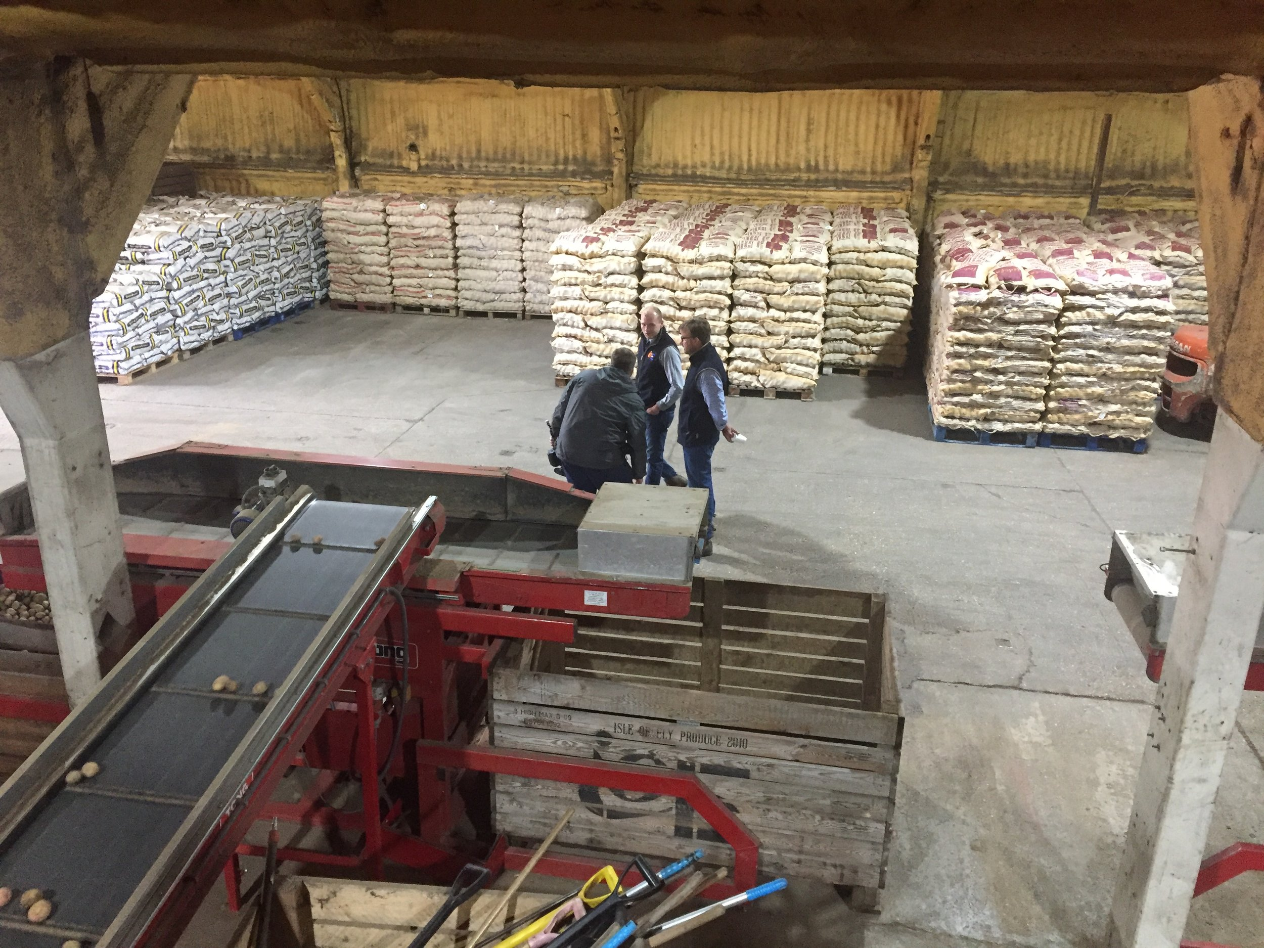 Potatoes bagged and stored on pallets, ready for shipping out to the fish and chip shops of our nation!
