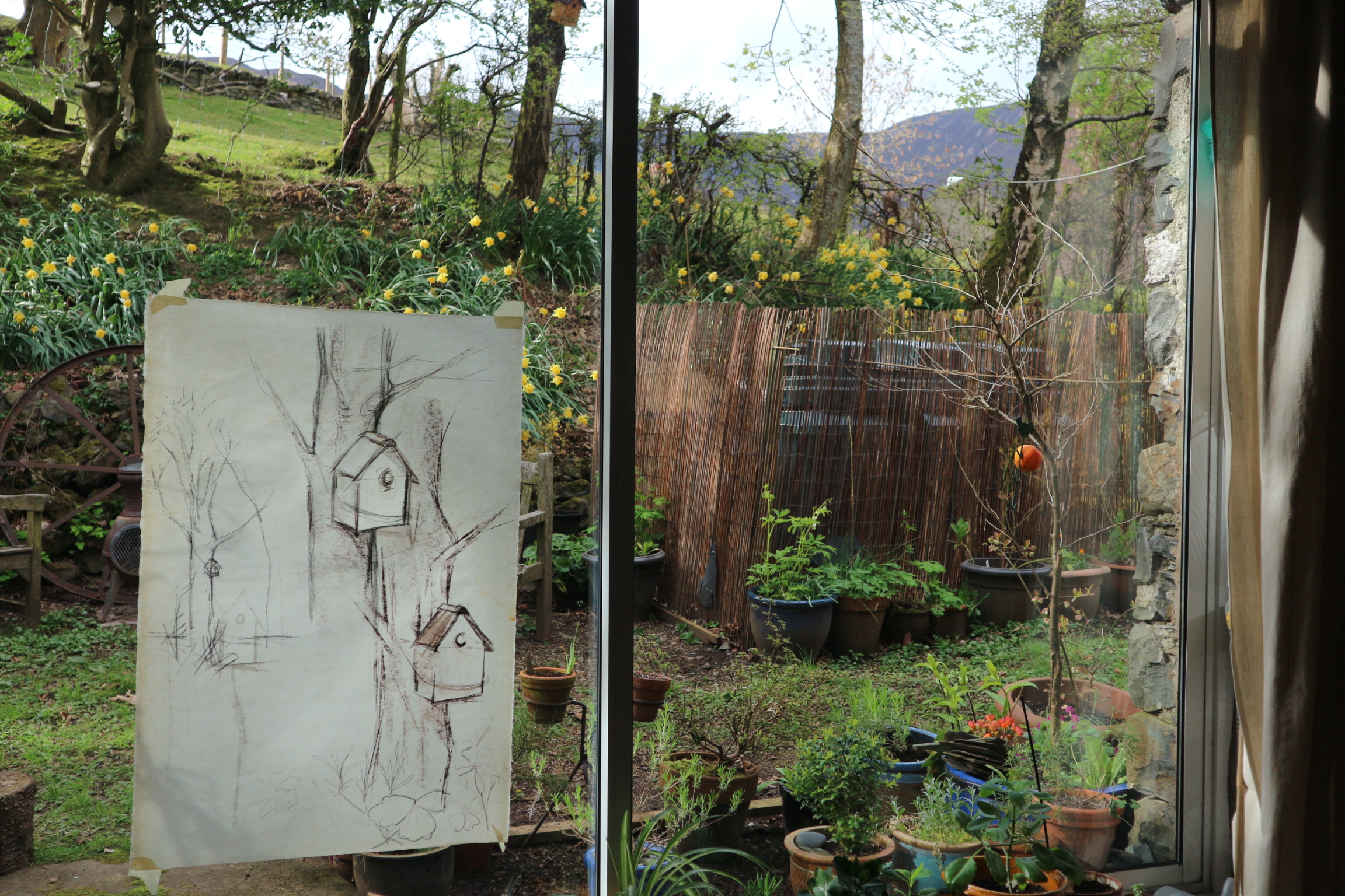 The original drawing...you can just see the bird house!