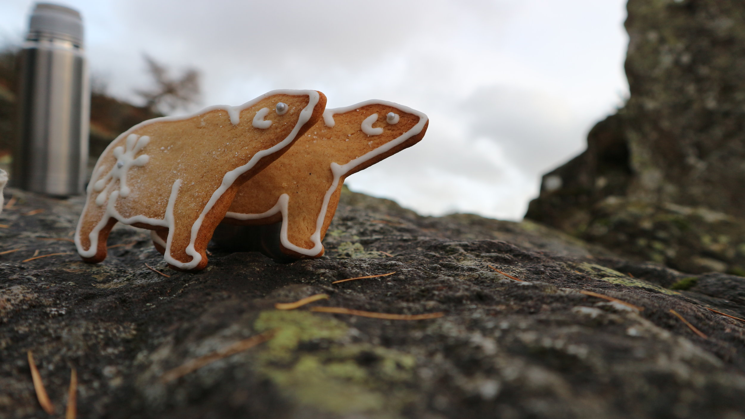Gingerbread bears ...they didn't make it back from the walk up to Alcock Tarn.