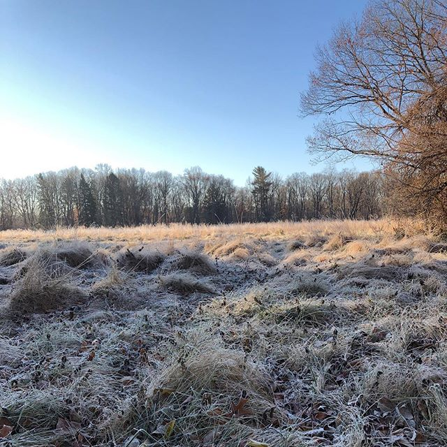 HOOSIER VORTEX: A morning jog through crunchy mounds of icy grasses, a cold river, ducks.