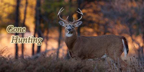 Gone-Hunting-Buck-CS-182.jpg