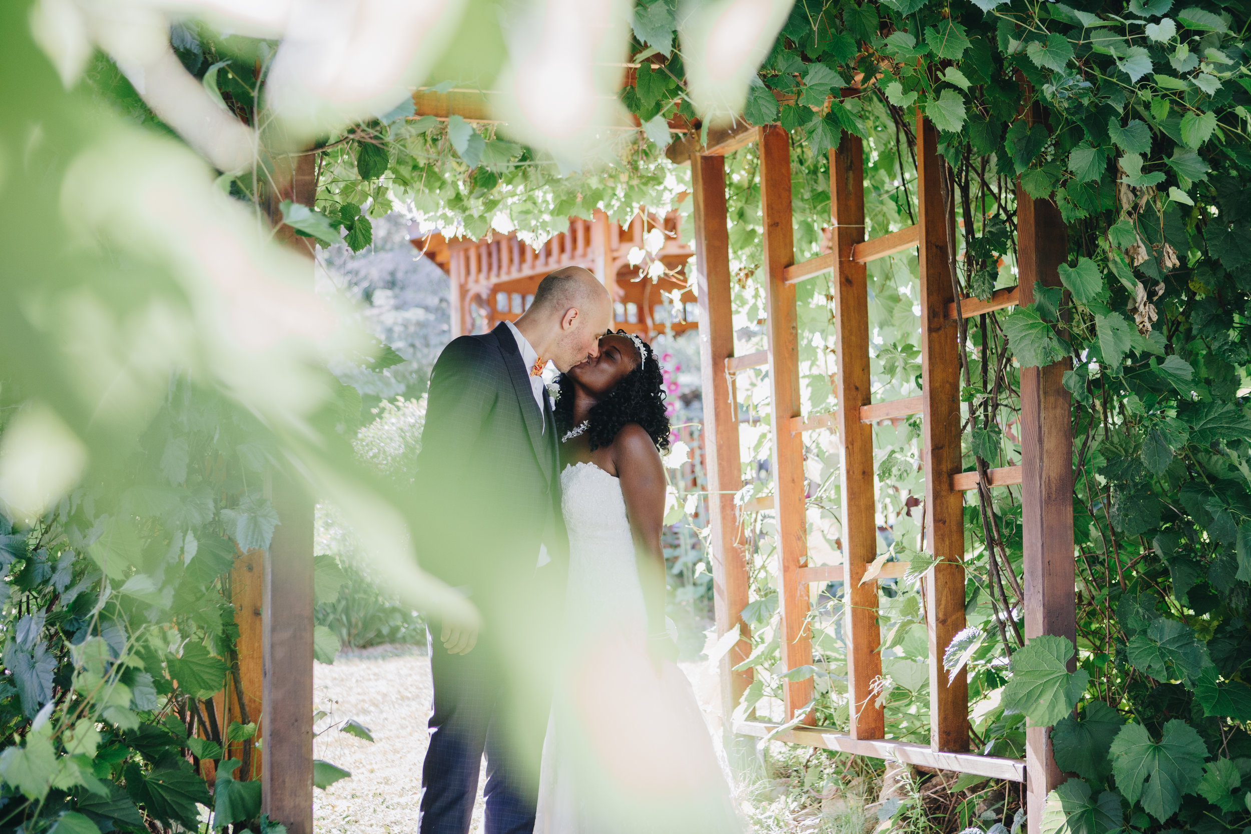 wedding packages - Starting at $2000