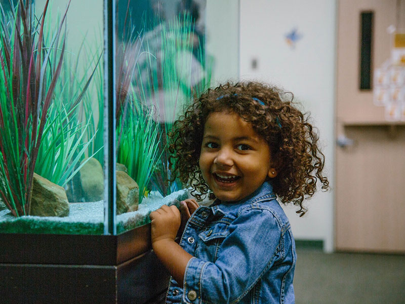 preschool girl aquarium.jpg