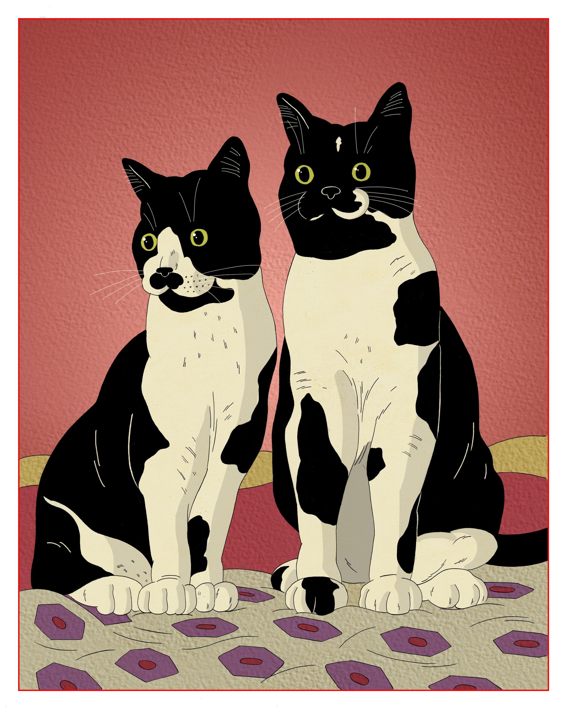 Aidan's Cats.jpg