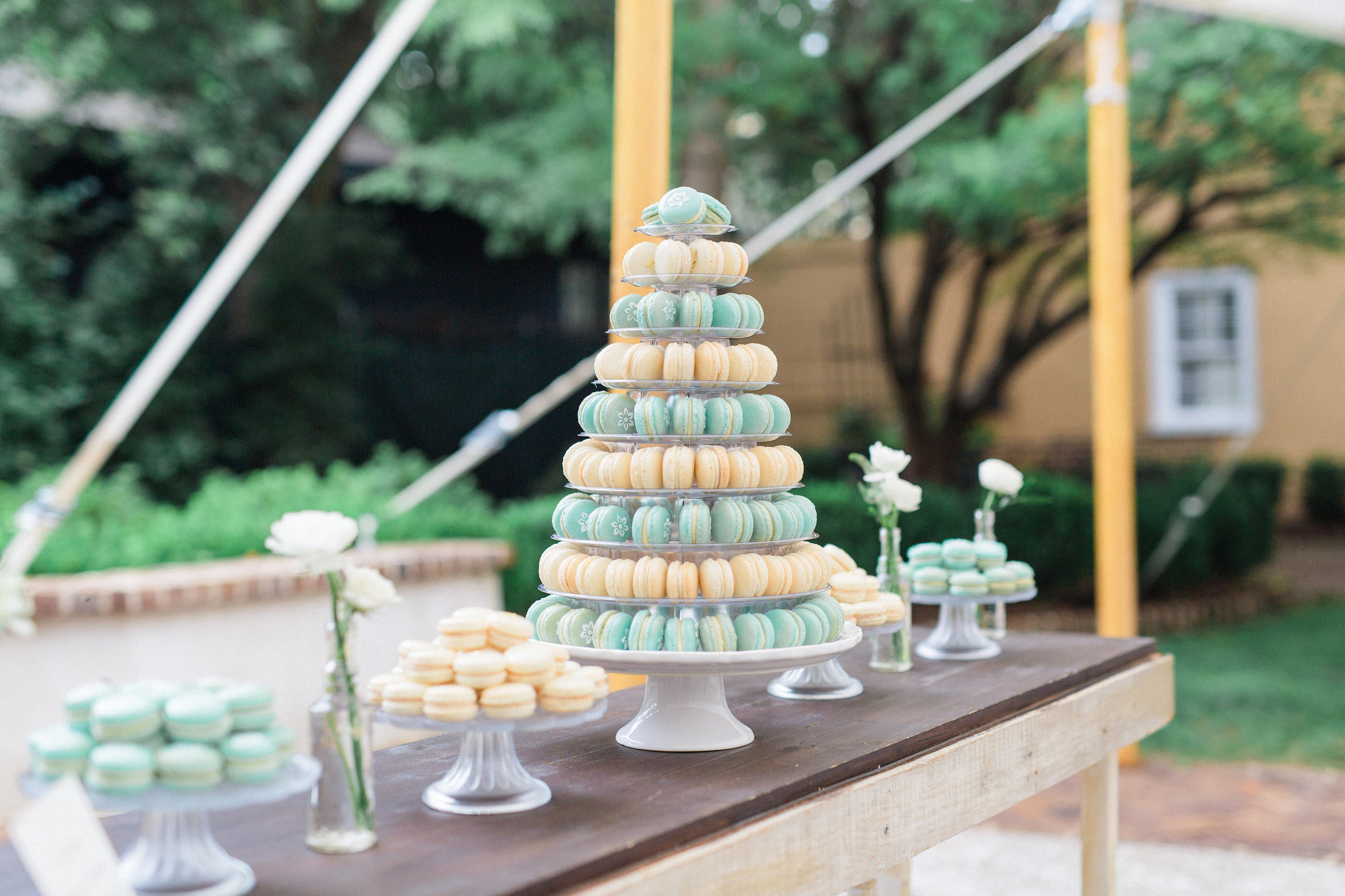 catherineannphotography-theknotparty-charleston-105.jpg