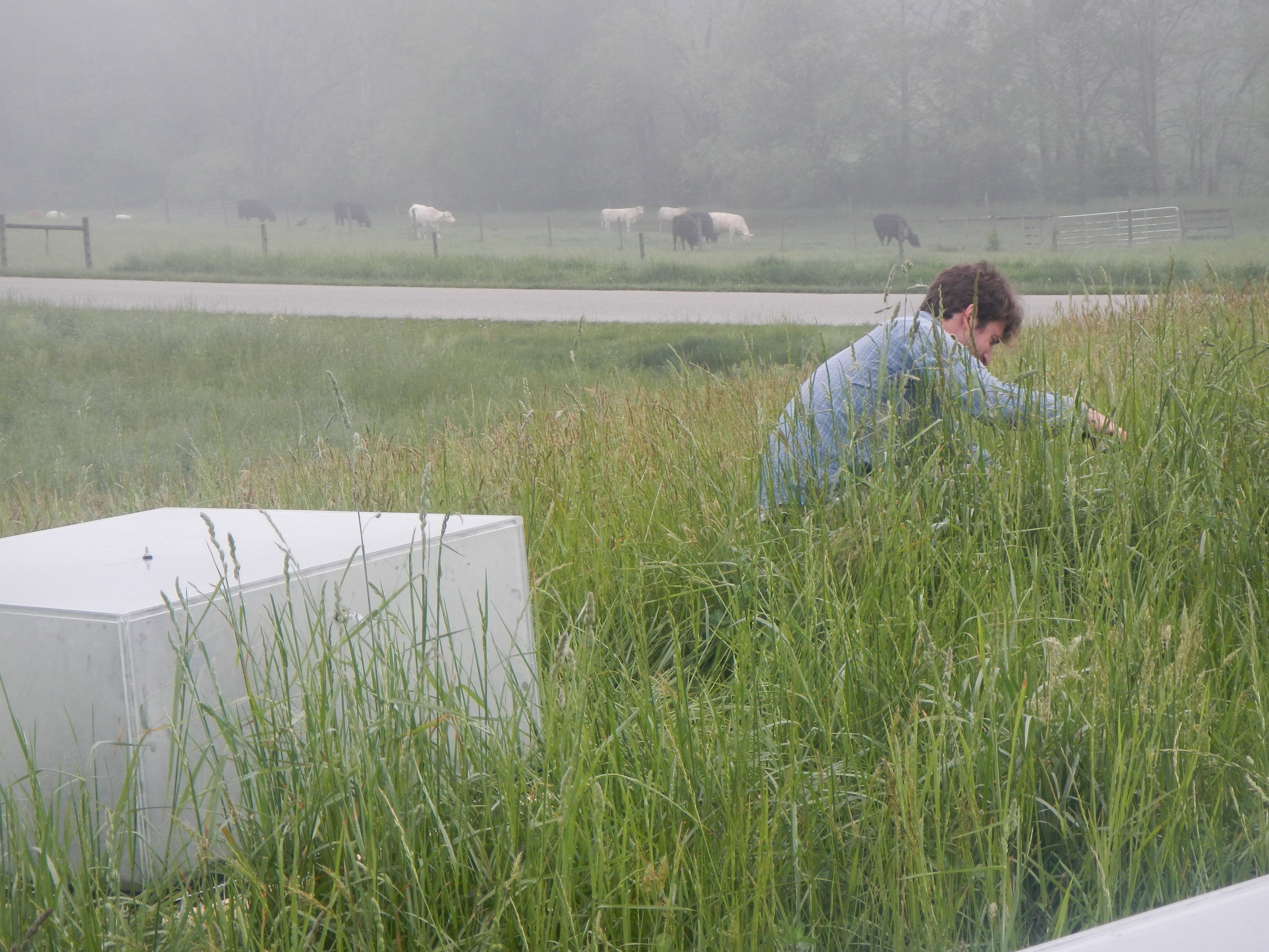 Carl working at the S.C.A.R.E. (Soil Carbon Antibiotic Resistance Experiment) site, where we are tracking the cycling of carbon and nitrogen when soils are exposed to antibiotic free manure or manure from cattle given one of two types of antibiotics.