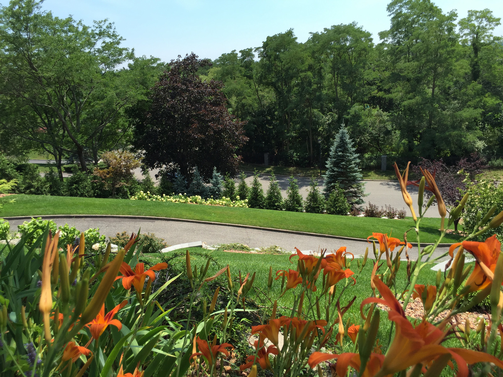 Landscape design with driveway in Long Island, NY
