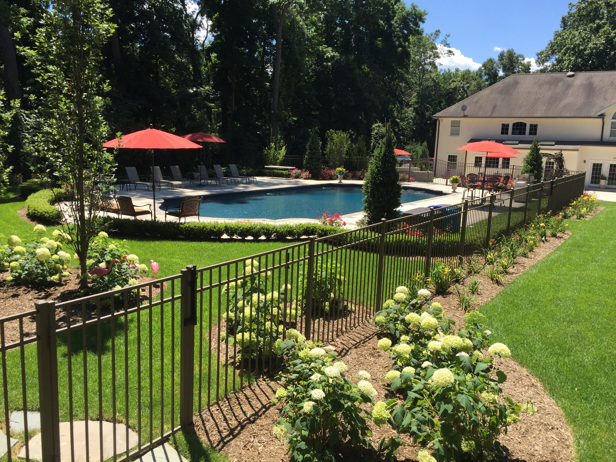 Landscape design with pool in Long Island, NY