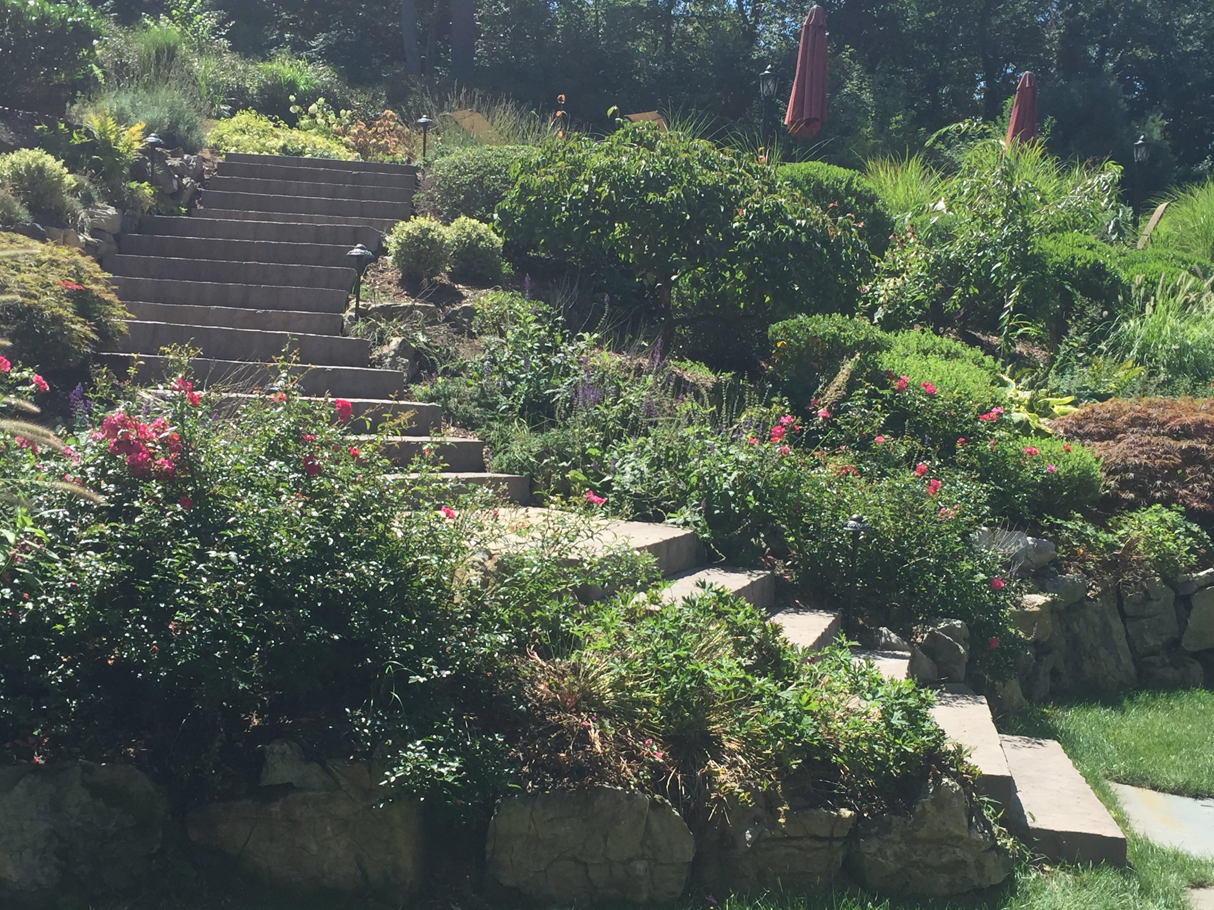 Professional landscape design planting company in Long Island, NY