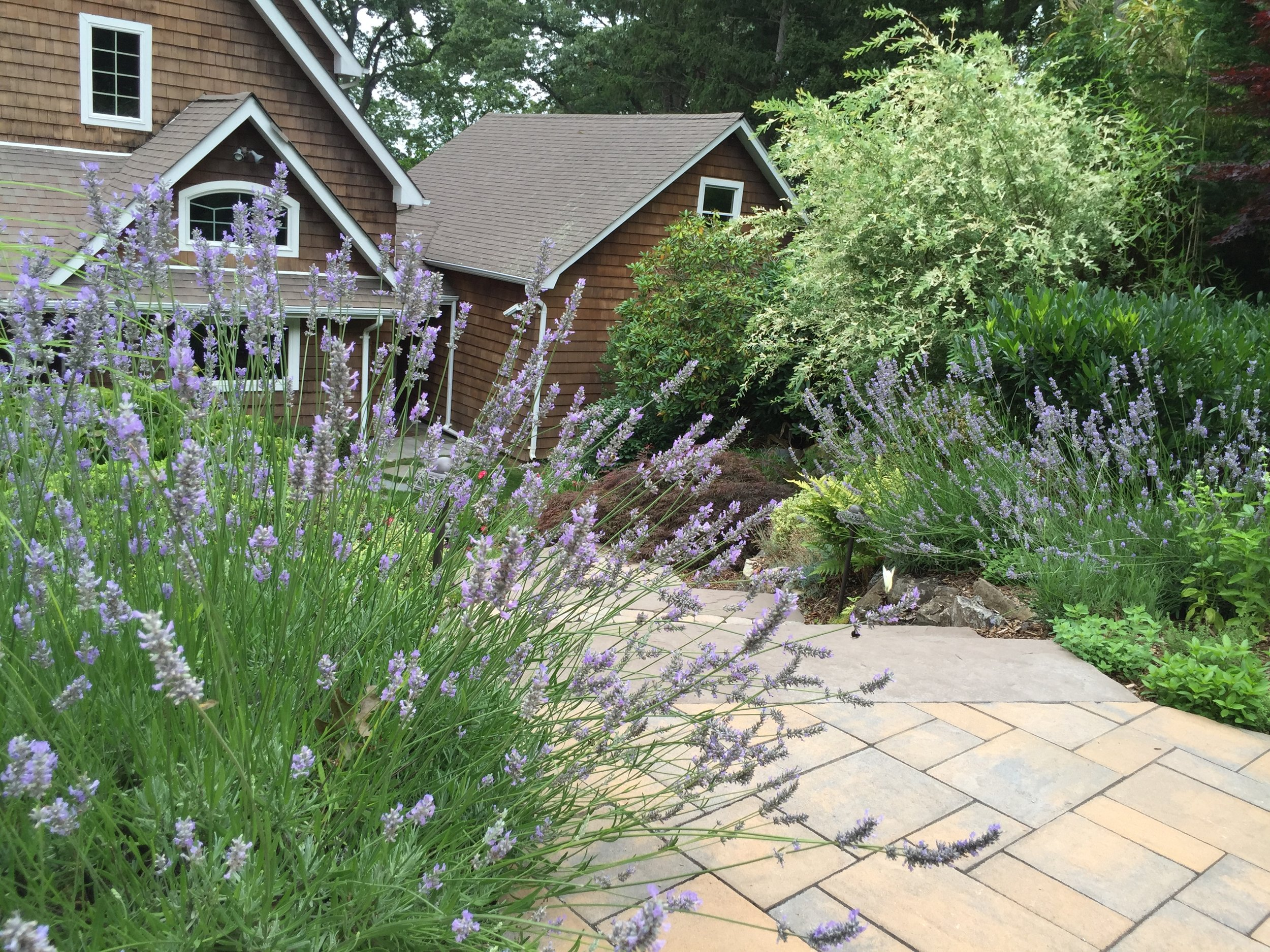 Top hardscape planting design in Long Island, NY
