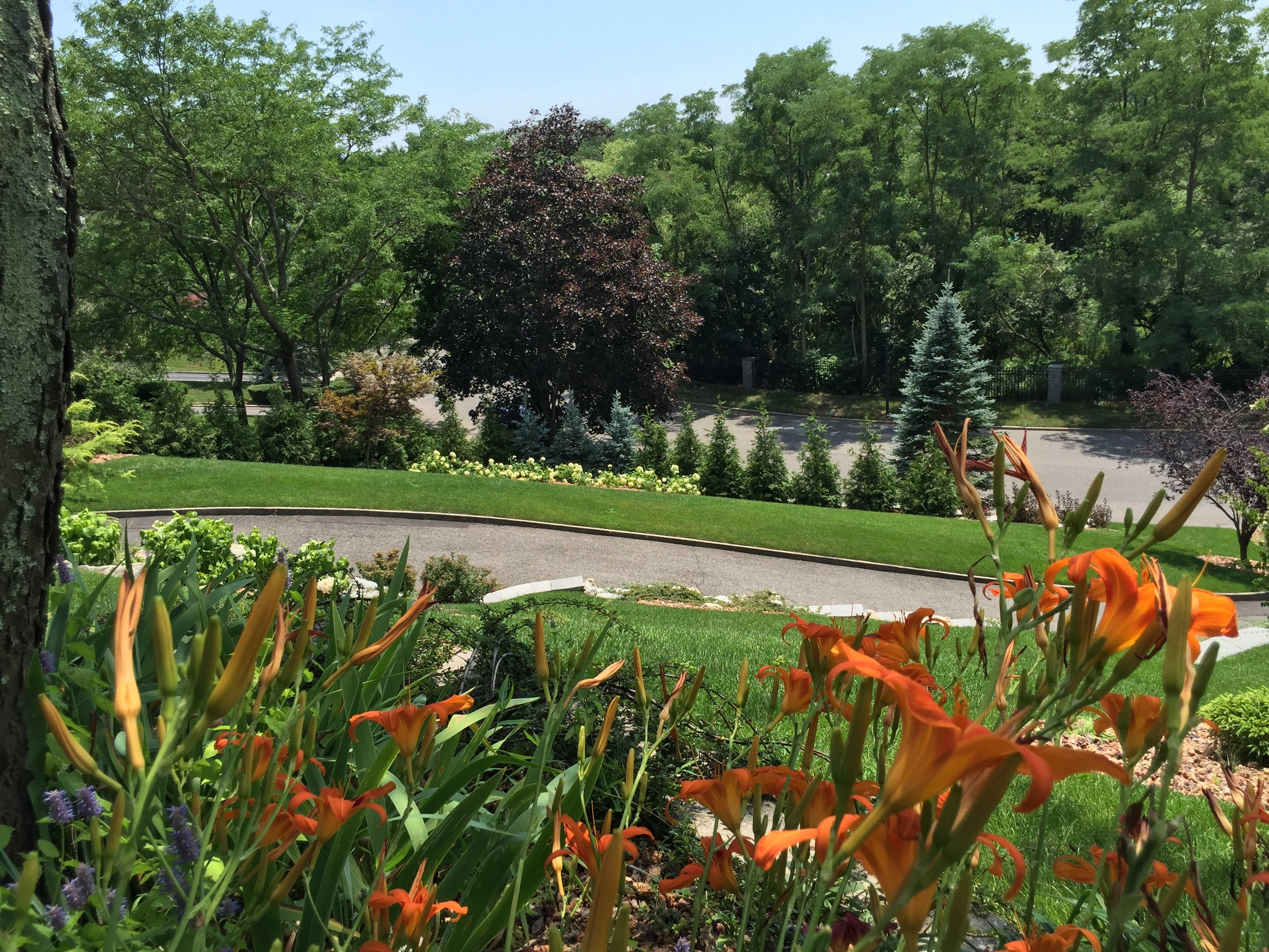 Landscape design with flower in Long Island, NY
