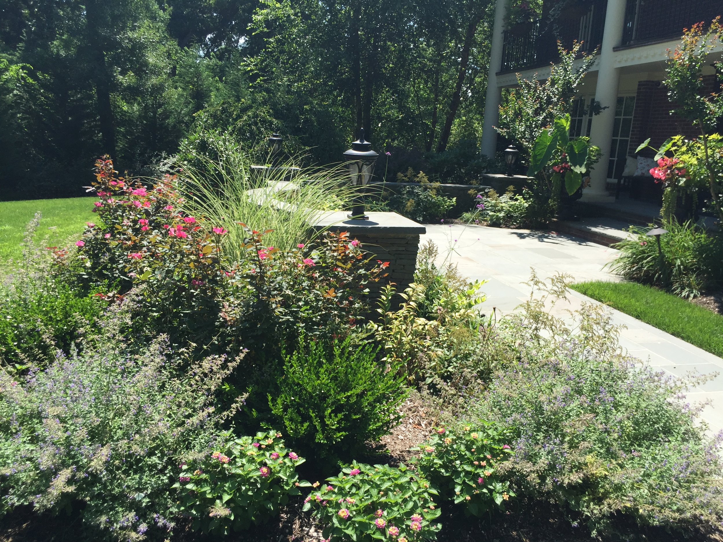 Top landscape architecture with plantingsin Long Island, NY