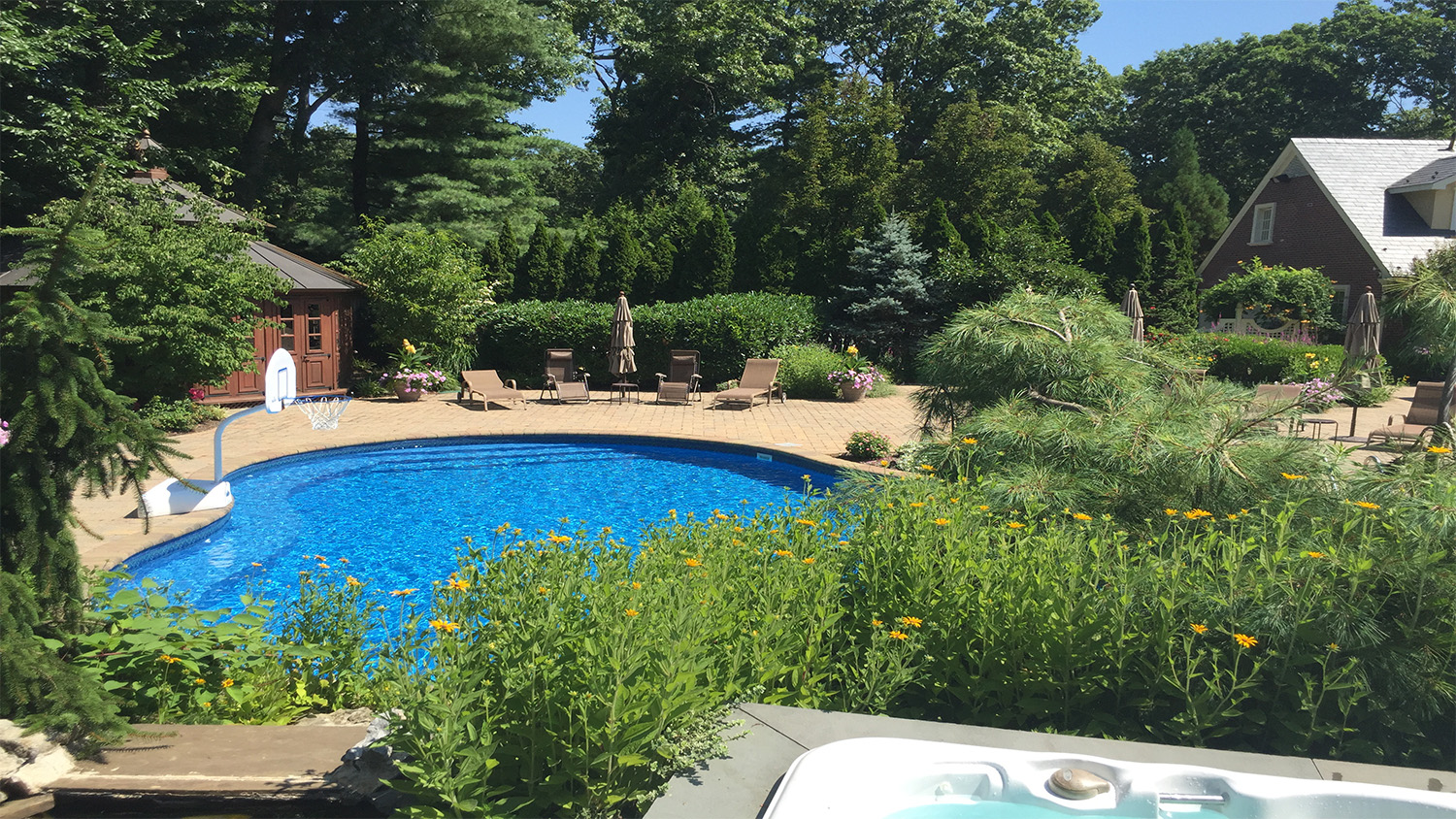 Professional landscape design company with pool area in Long Island, NY