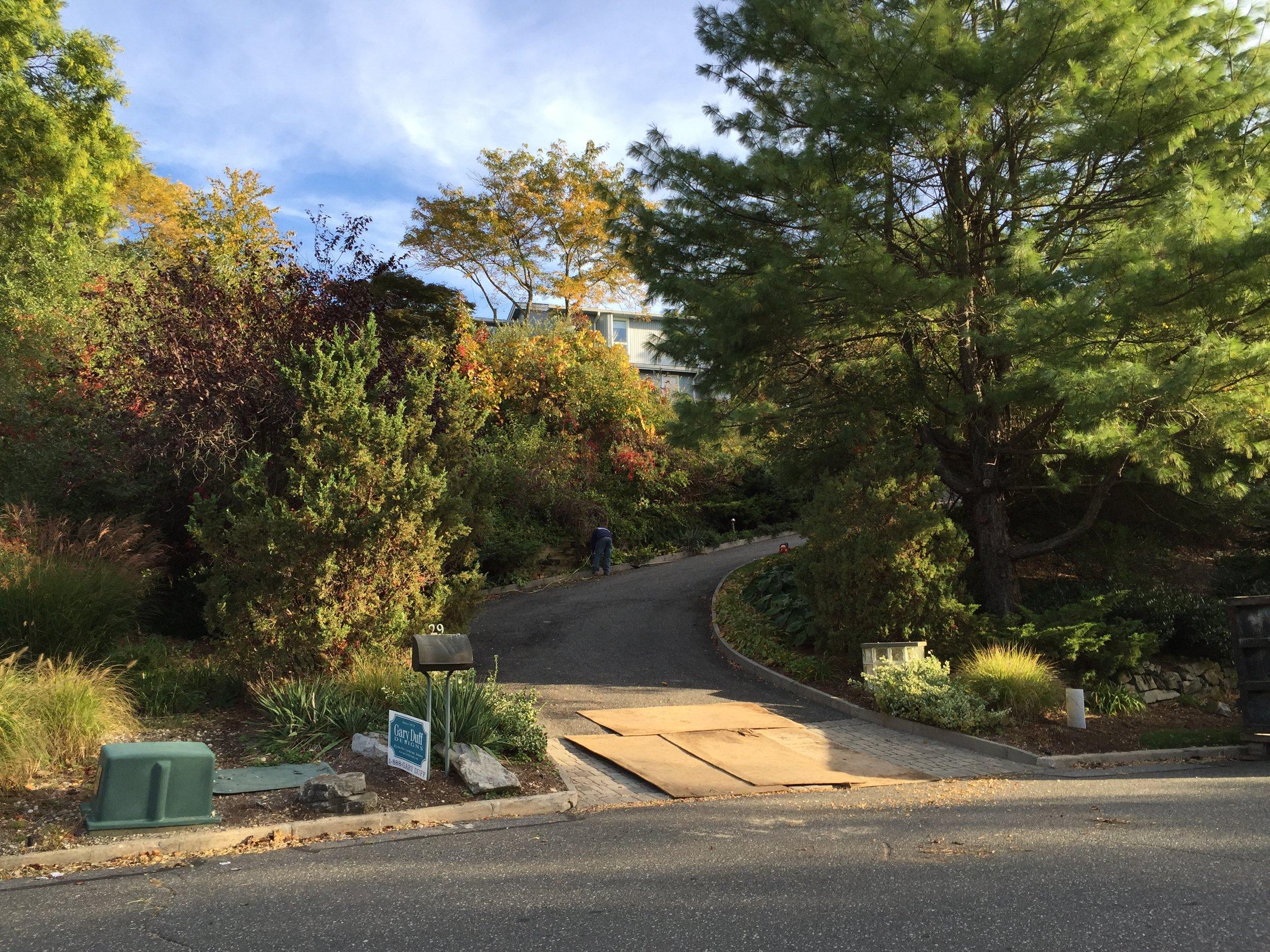 Landscape design with paved drivewayin Long Island, NY