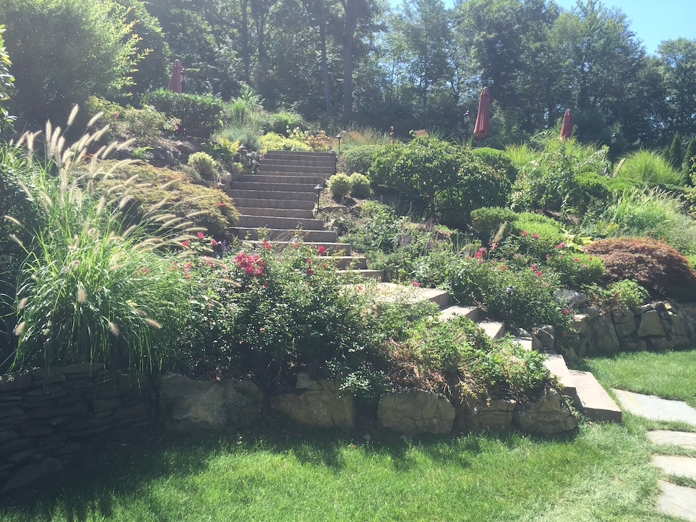 Landscape Architecture Ideas for Sloping Terrain in Stony Brook, NY