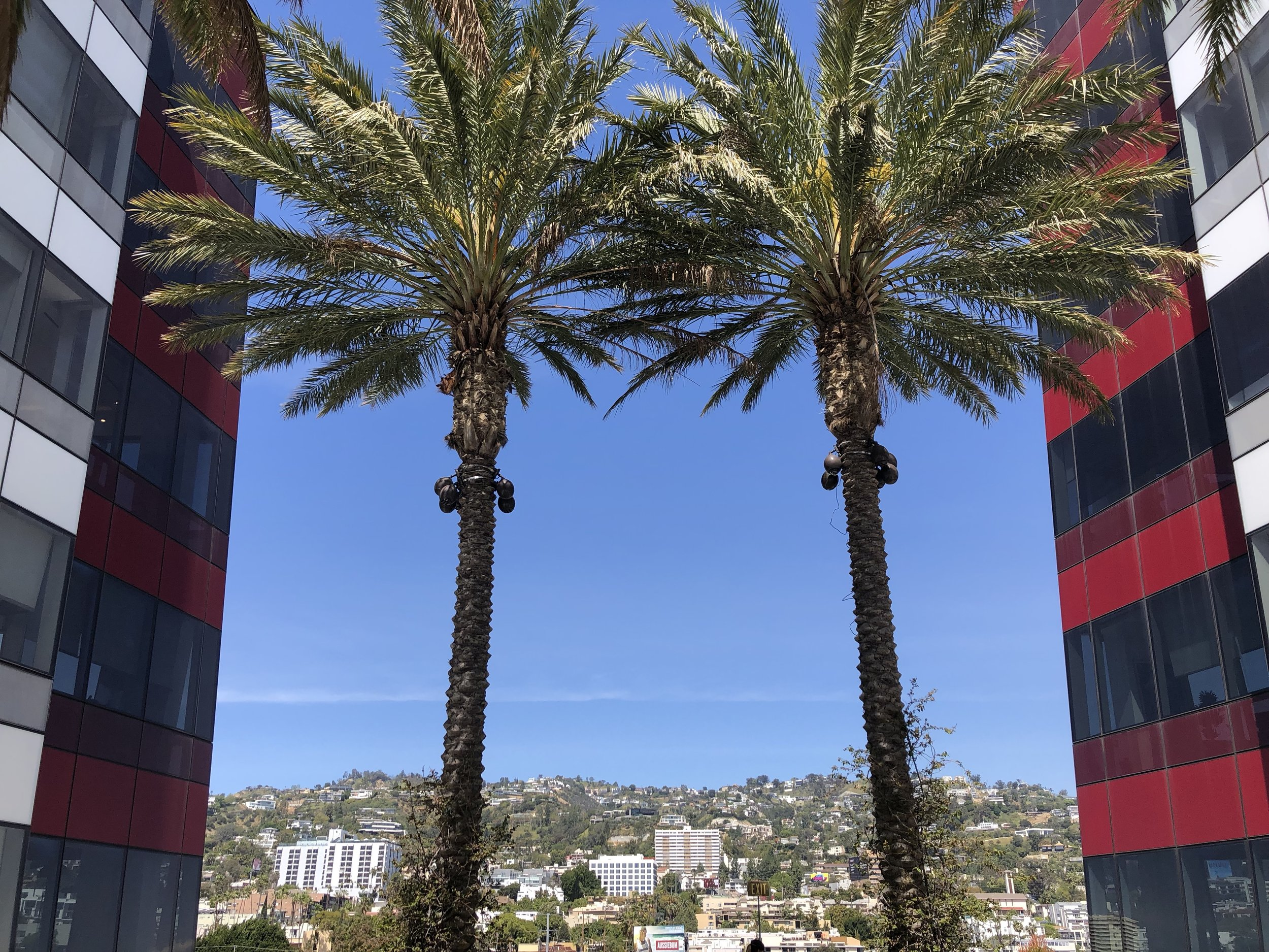 west-hollywood-destination-recovery