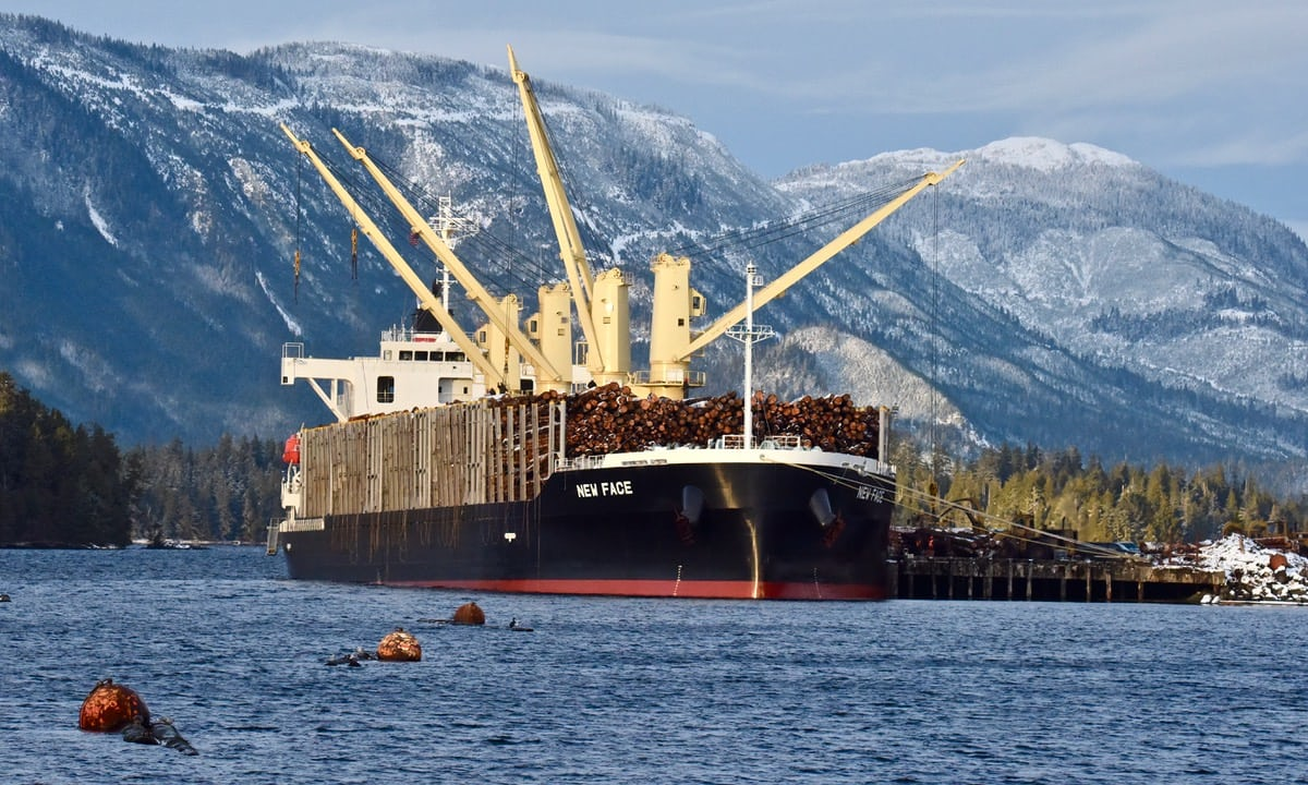 A ship being loaded with logs just north of the Viking mill. The timber is bound for China. Photo by Archipelagan.