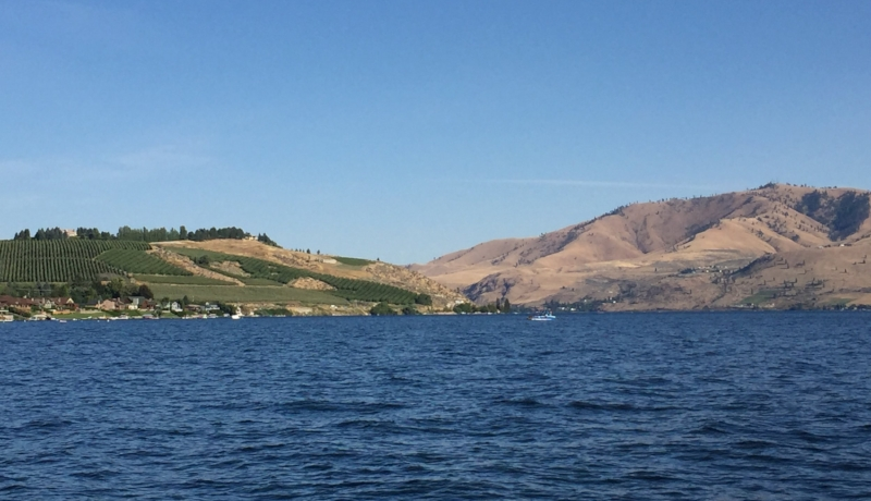 Lake Chelan with view of vineyards and hills.