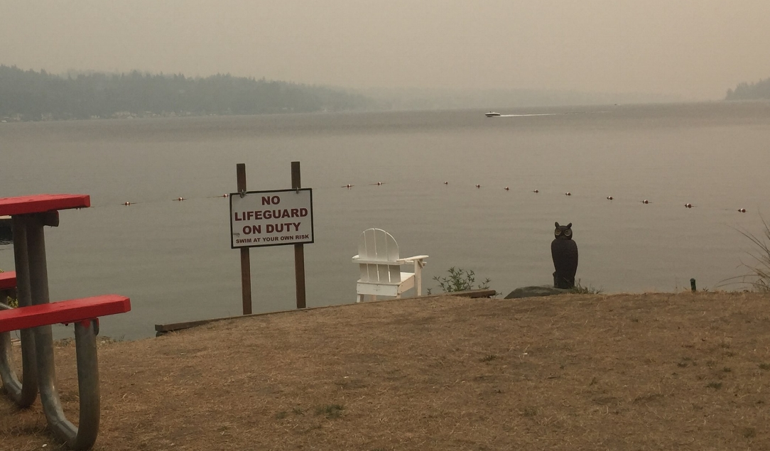 Photo of a lakeside beach with haze in sky and No Lifeguard sign.