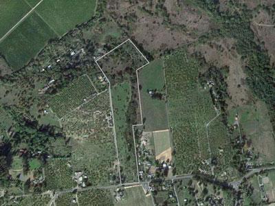 wilson_aerial.jpg