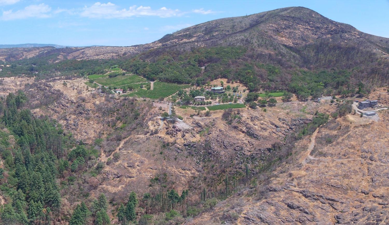 homesite-monticello-road-aerial-east-views.jpg