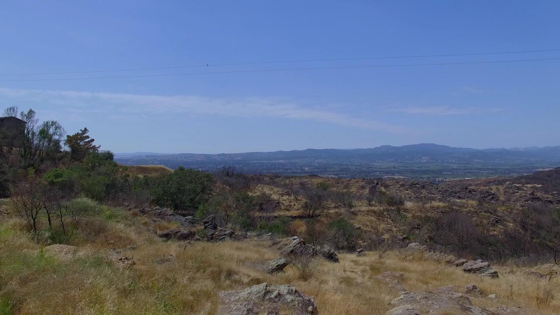 mayacamas-mountains-monticello-road.jpg