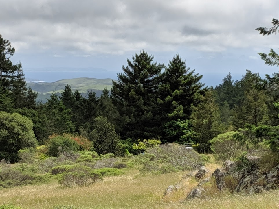 View from upper meadow.